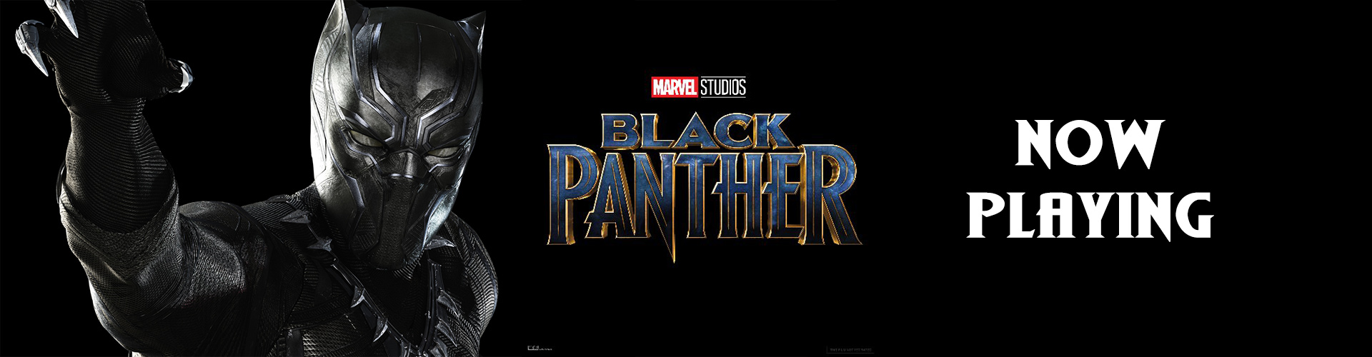 black-panther-now-playing